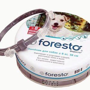 Форесто ошейник для собак до 8 кг, 38 см,1 шт.
