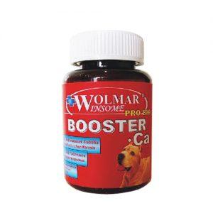 Wolmar Winsome Pro Bio  BOOSTER CA, 180 таб