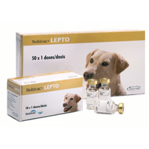 Нобивак Lepto, 1 доза