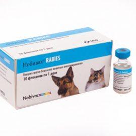 Нобивак rabies, 1 доза