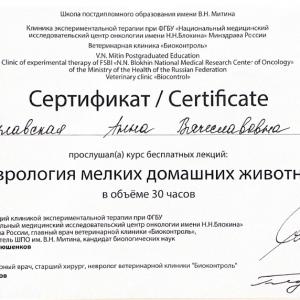 Булавская Анна Вячеславовна