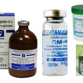 1. Антибактериальные препараты