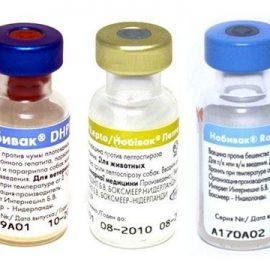 2. Вакцины