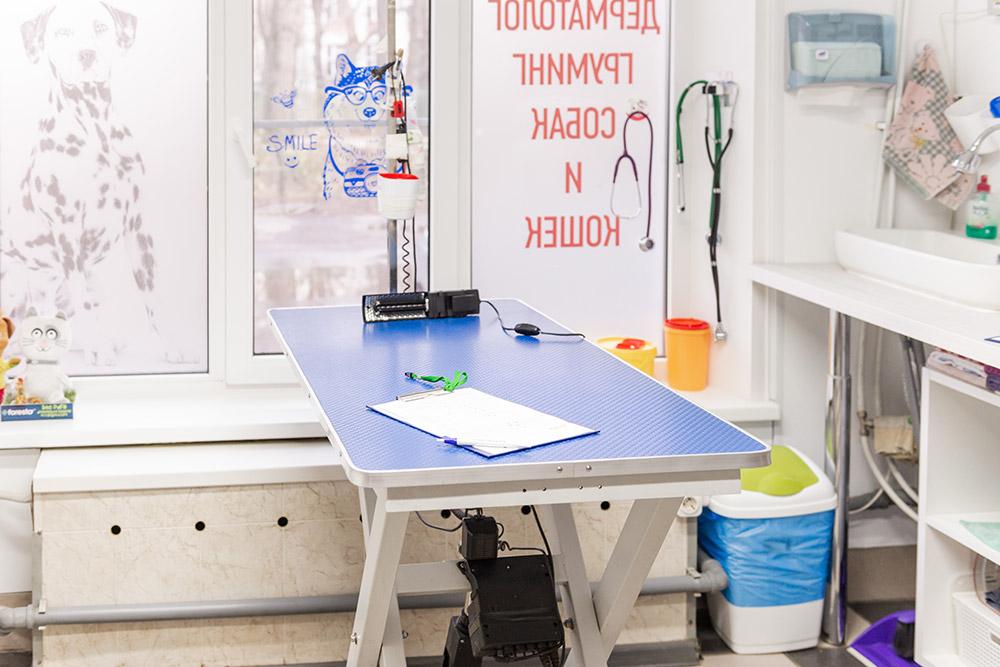 Интерьер и оборудование ветклиники - фото 18