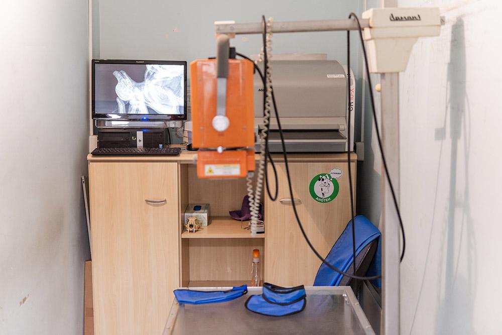 Интерьер и оборудование ветклиники - фото 20