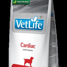 77_13_77_49_vet-life-canine-cardiac@web