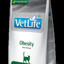 83_48_83_42_vet-life-feline-obesity@web